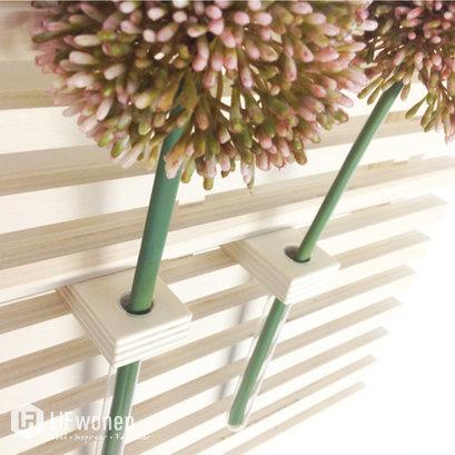 Accessoires voor houten wallframe Dots