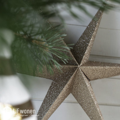 delight-department-kerstster-goud-glitter-sfeer