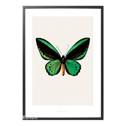 Hagendornhagen_poster_vlinder_groen