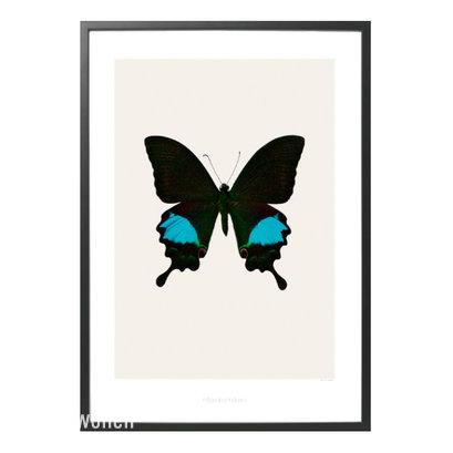Hagendornhagen_poster_vlinder_zwart