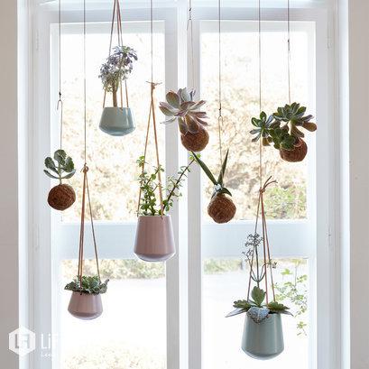 Hangende bloempotten