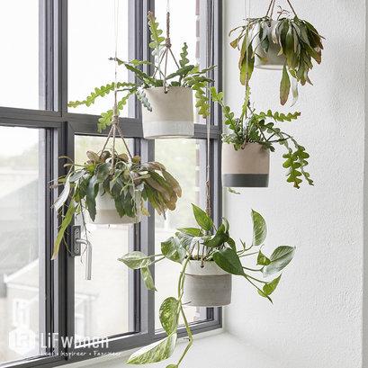 hubsch-hangende-bloempotjes